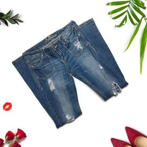 Premiere Bootcut Distressed Jeans Size 5/6